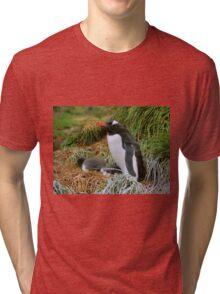 Gentoo Penguins on the Nest Tri-blend T-Shirt
