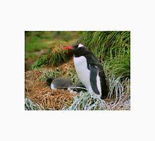 Gentoo Penguins on the Nest Unisex T-Shirt