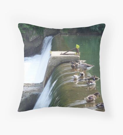 Waterfowl And Waterfalls Throw Pillow