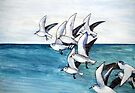 Sailors Become Seabirds by Val Spayne