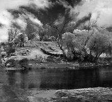 Greenough River ~ Eradu ~ WA  by Pene Stevens
