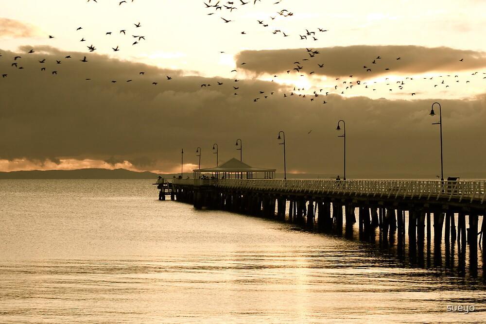 Cormorants over Pier by sueyo
