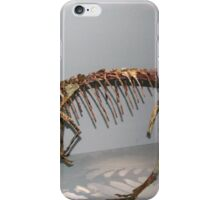 Random Coelophysis iPhone Case/Skin