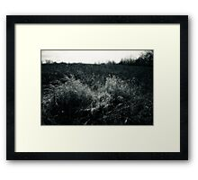 Prairie Meadow In Late Winter Framed Print