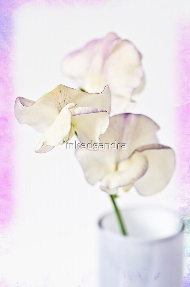 Sweet lilac sherbert by inkedsandra