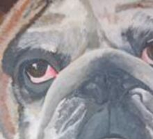 Yale The American Bulldog Sticker