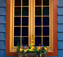 Window Box by Elisabeth van Eyken