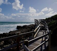 Beach Path by timbransby
