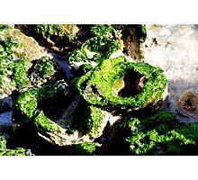 Mossy Rocks Photographic Print
