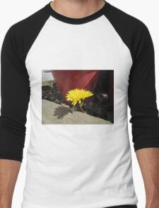 Dandelion by plant pot Men's Baseball ¾ T-Shirt
