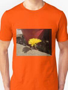 Dandelion by plant pot Unisex T-Shirt