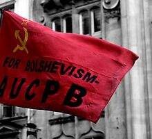 Bolshevism, Whitehall, London 2011 by Timothy Adams