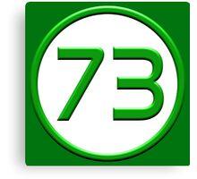 Green 73 Canvas Print