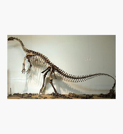 Strong Plateosaurus Photographic Print