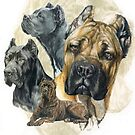 Cane Corso/Ghost by BarbBarcikKeith