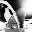 ButterFly On Stage by withsun