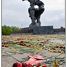Flowers at the Monument 4, After The Rain and After May 9 (Victory Day) 2011, Rīga, Latvia. (2011) by Madeleine Marx-Bentley