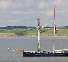 Wylde Swan, Tall Ship, Waterford Harbour, Ireland by Andrew Jones