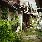 Village Life by withsun