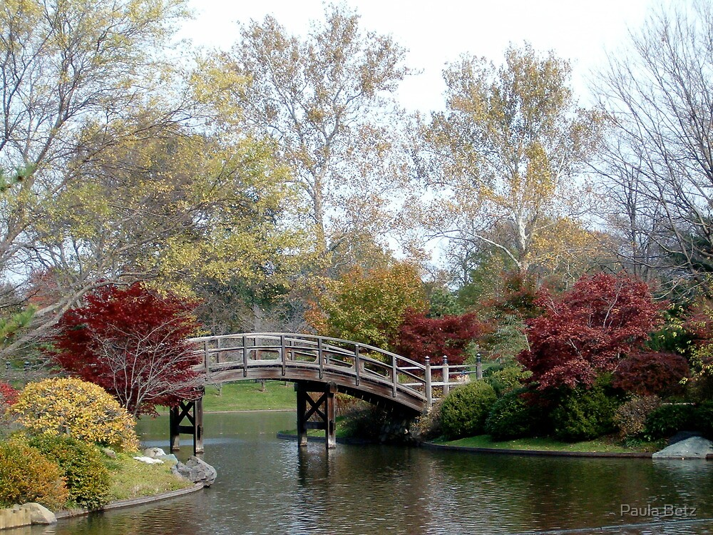 Fall in the Japanese Garden by Paula Betz