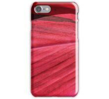 Boundary iPhone Case/Skin
