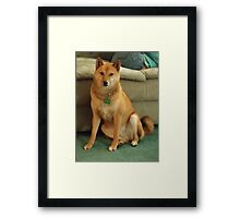 Sporty - being very casual Framed Print