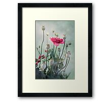 Pods, Buds and Flowers Framed Print