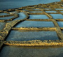 Square Path by Bokeh  Photography
