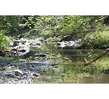 Down the Creek Photographic Print
