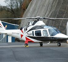 Agusta Westland G-OFTC - Castle Air Charters by Peter Gosling