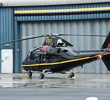 Agusta Westland G-TELY - Castle Air Charters by Peter Gosling