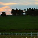 Country Sunset by Susan Blevins