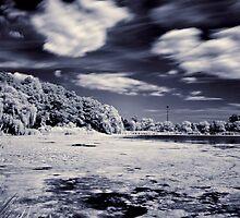 Pond Side by Gary Cummins
