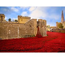 Poppies At Tower Of London Photographic Print
