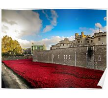 Tower Of London Poppies Poster