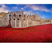 Tower Of London Poppies 2014 Photographic Print