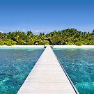 Velidhu Atoll, The Maldives by Atanas Bozhikov NASKO