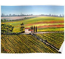 Tuscany - Vineyards Poster