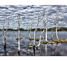Sticks that stand tall  by liippy