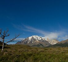 Scenes of Patagonia by Coreena Vieth