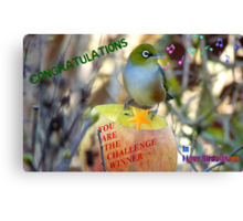 Challenge Winner Banner - I love birds group Canvas Print