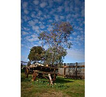 The Licorice Factory No 2 ~ Junee NSW Photographic Print