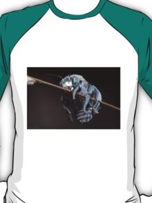 Blue Banded Bee T-Shirt