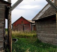 Abandoned farm 4 by Tracy Friesen