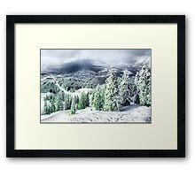 A Winters Dream Framed Print