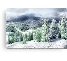 A Winters Dream Canvas Print