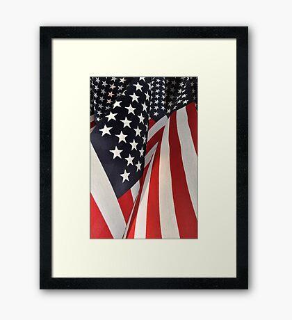 Stars and Stripes Forever ! Framed Print