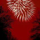 Fireworks Spectacular © by Dawn M. Becker