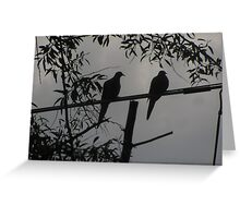 """Two Turtle Doves Hangin' Together"" Greeting Card"