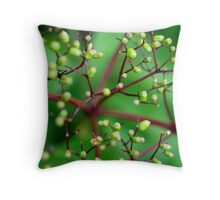 All the Better to See you with My Dear Throw Pillow
